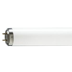 8' Fluorescent tube
